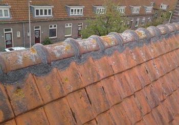 Nokvorst reparatie Luit Blomstraat Utrecht